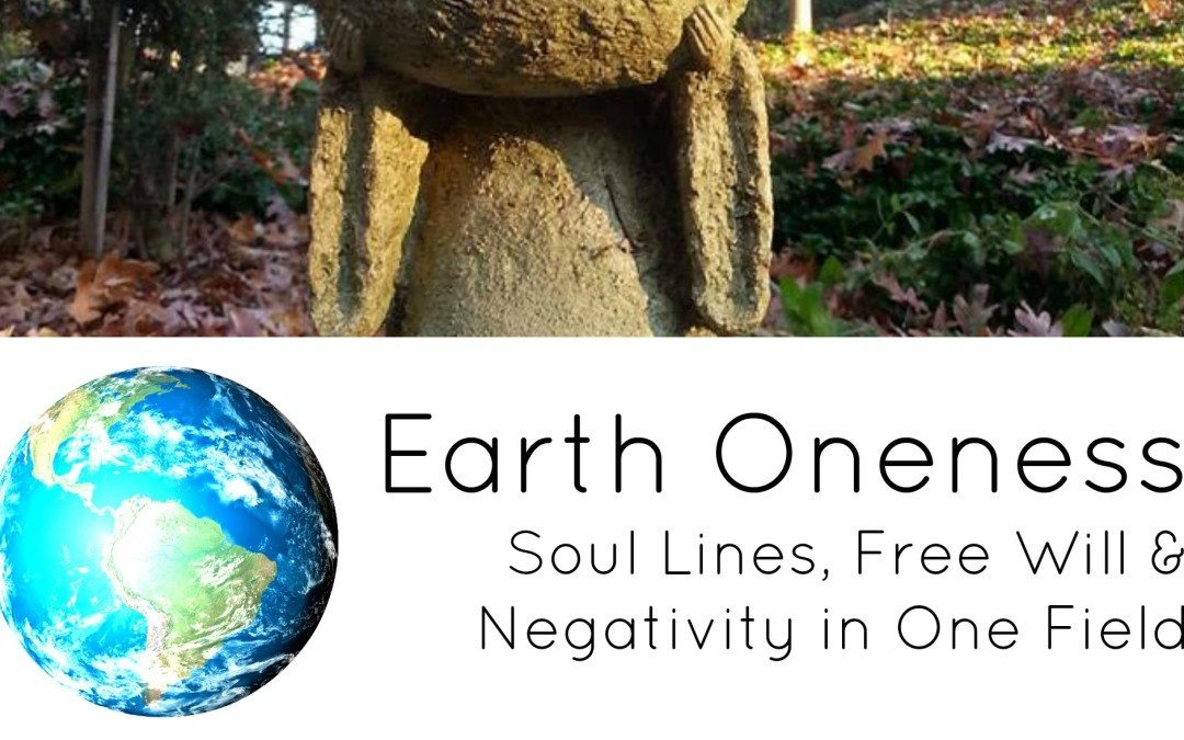 Soul Lines, Free Will & Negativity in One Field Physics – Part One